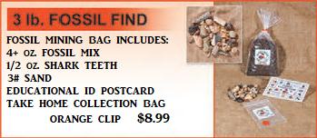 Fossil Find Bag