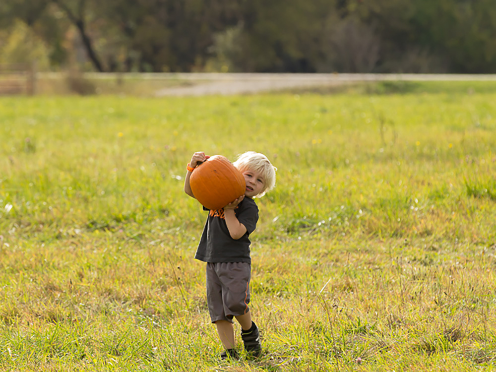 Little Boy Carrying Pumpkin